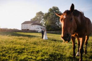 Windfall Farm Wedding Venue